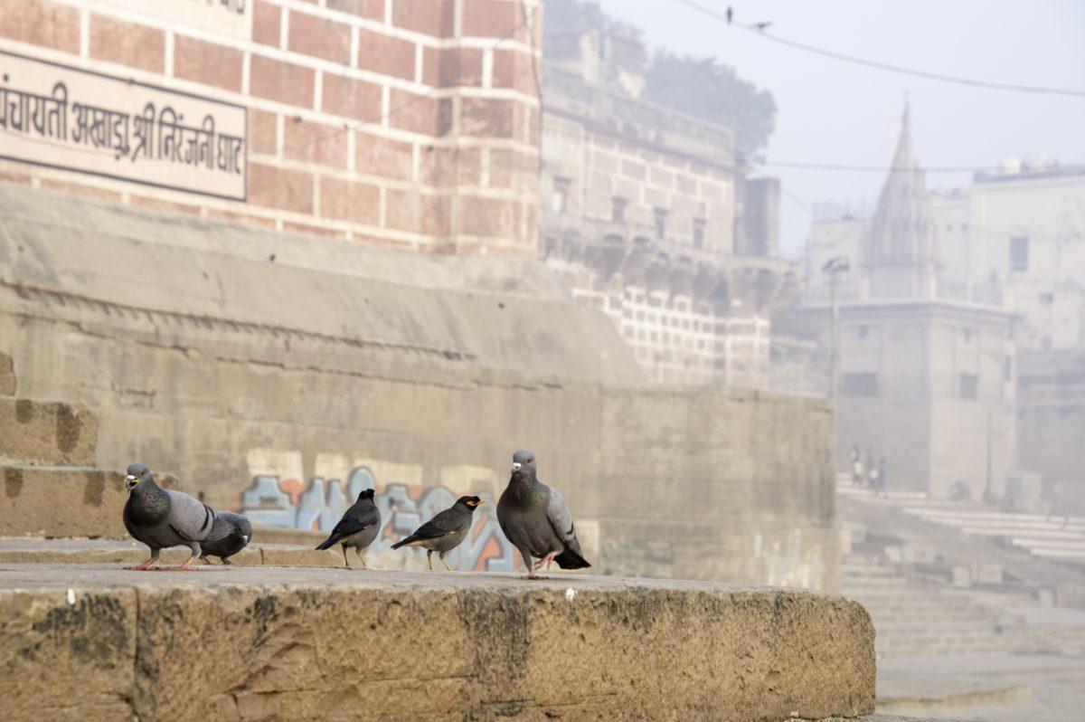 Varanasi-023