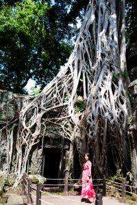 Web Angkor (44 sur 45)